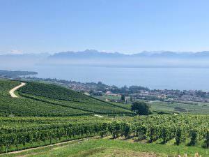 A beautiful Swiss Lake